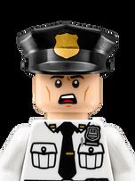 Security Guard 70910