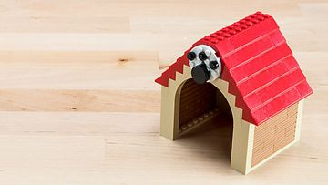 Building Tip Dog House
