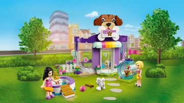 41691 - Doggy Day Care