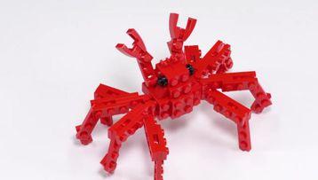 GL_LL_JumpeiMitsui_Spider Crab
