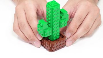 10 minute builds with Jumpei - Cactus!