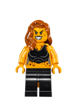 Cheetah2019