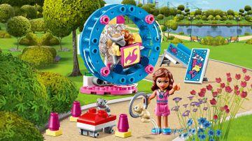 Olivia's Hamster Playground